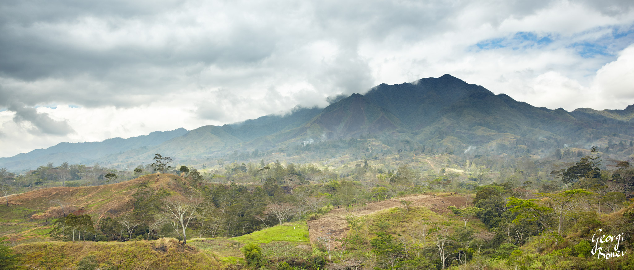 THE FOREST OF BISMARCK MOUNTAIN RANGE IN PAPUA NEW GUINEA