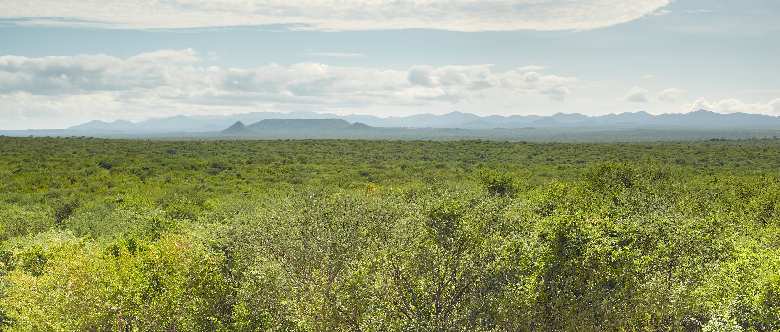 LOWER OMO VALLEY LANDSCAPE, ETHIOPIA
