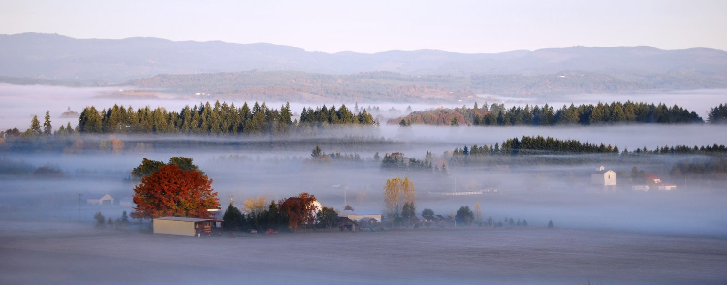 November in Oregon's Willamette Valley