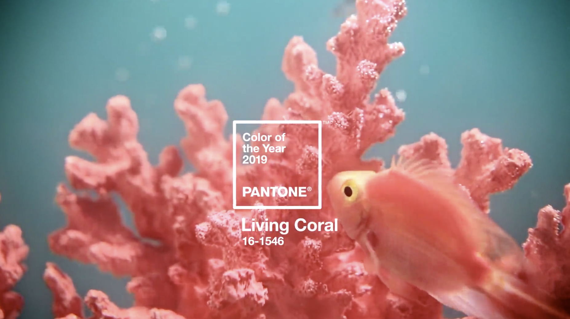 Screenshot 2018-12-06 at 16.33.35.png