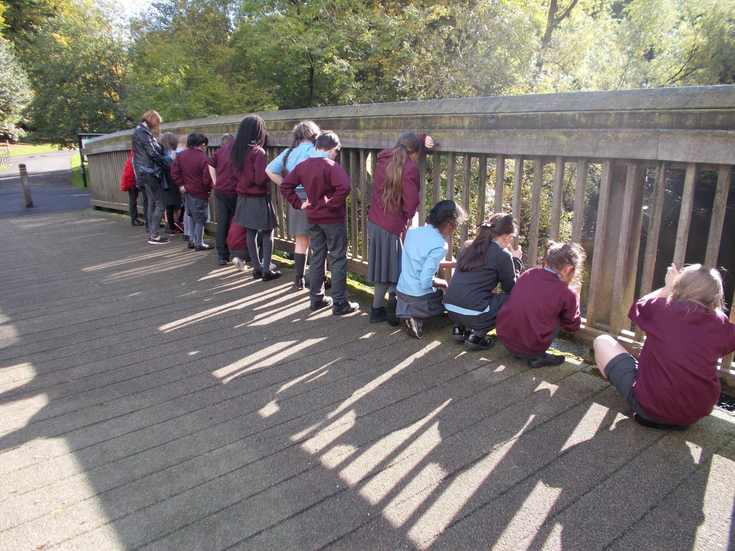 MBHT - School's programme at River Kelvin.JPG