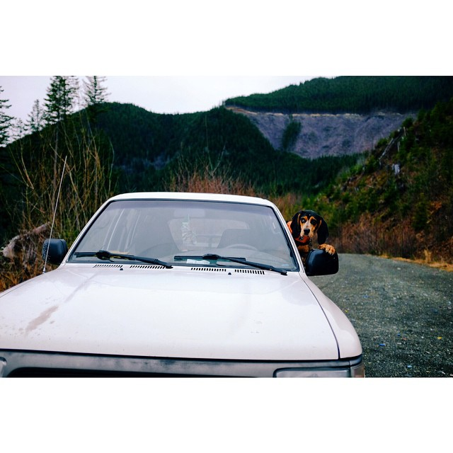 Nothin like a truck drivin' girl. @freehubmag by parisgore  http://ift.tt/1z4K1QH