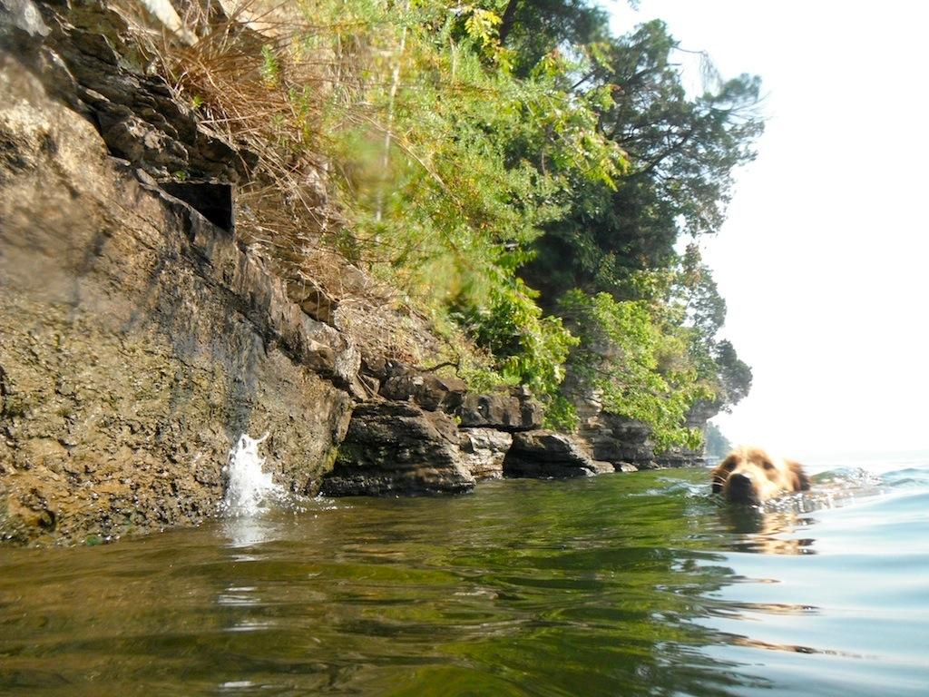 frassie-river-swim-saturday 110.jpg