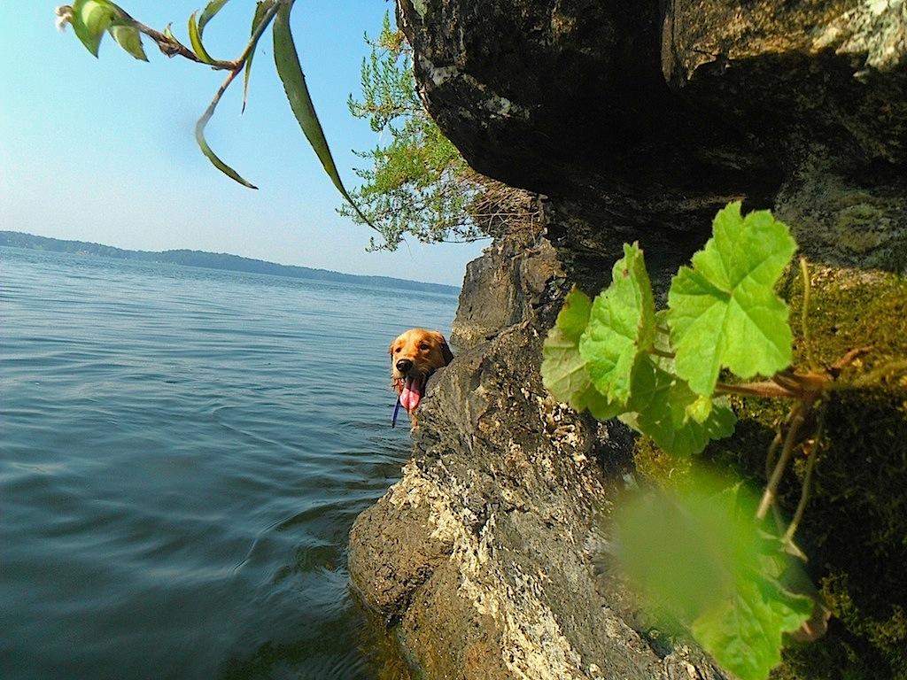 frassie-river-swim-saturday 103.jpg