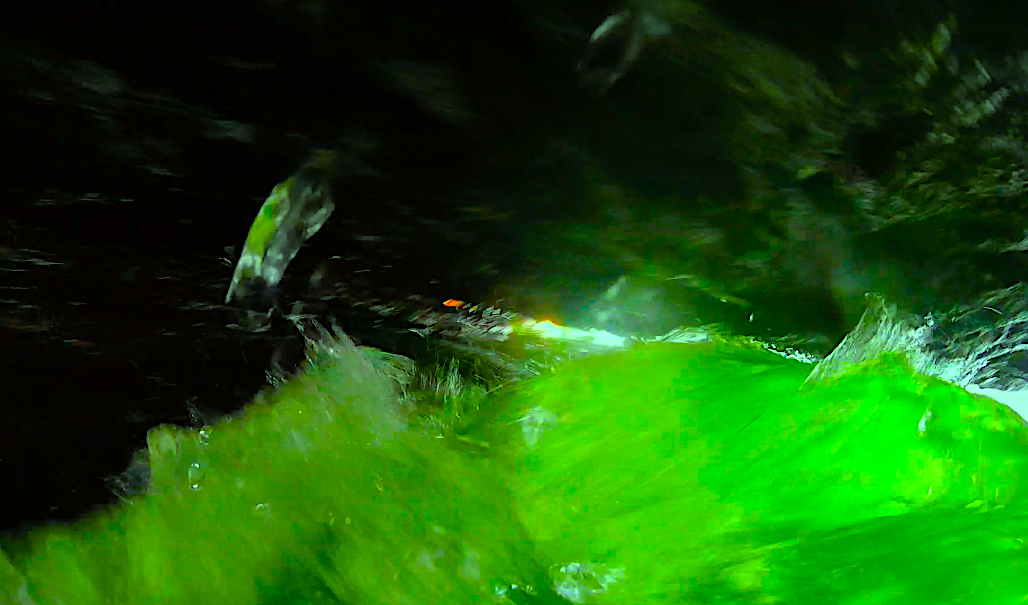 Green-river-splash-SCE Now.png