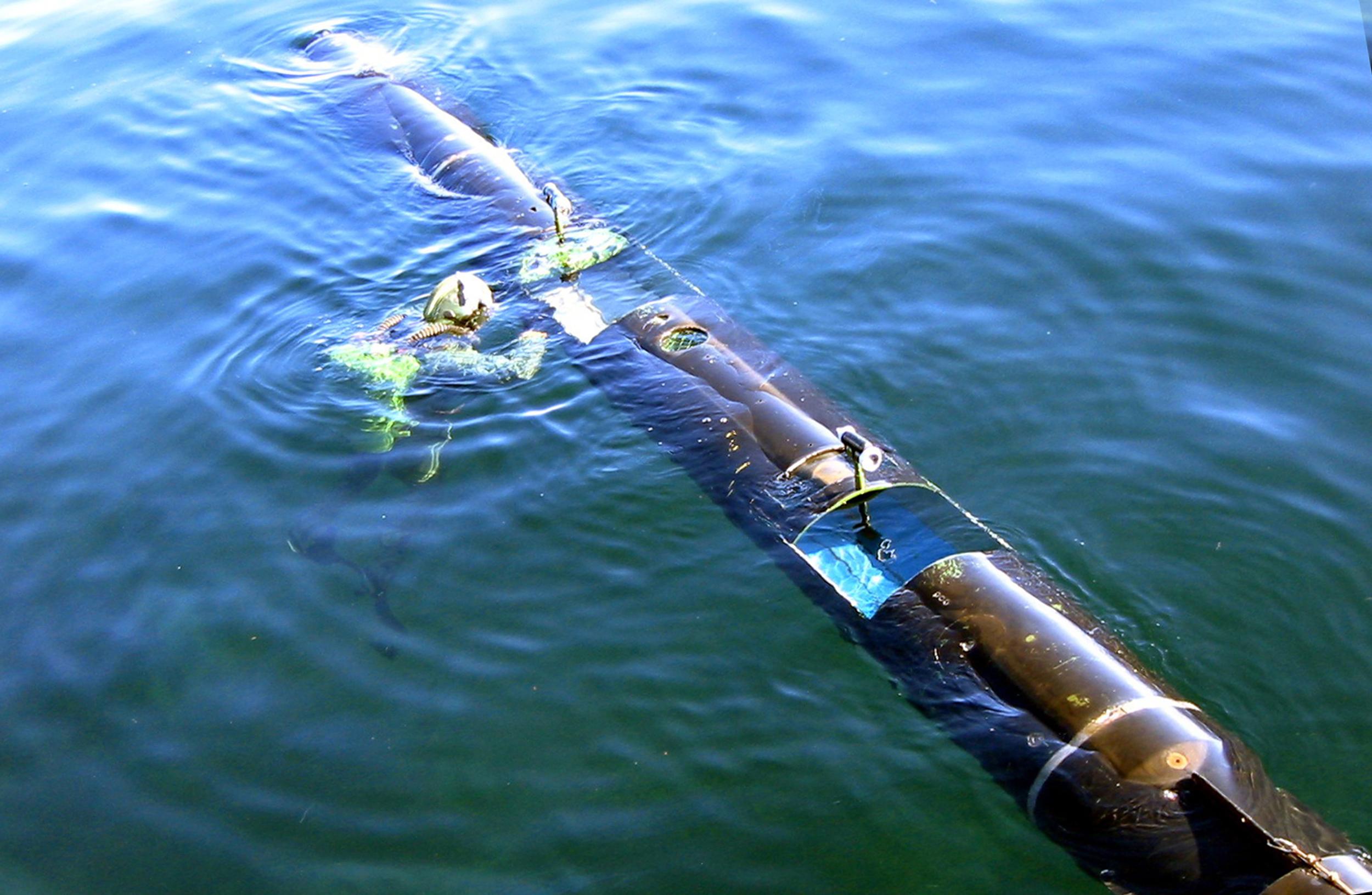 Sirenas konstruktion är based på torpedteknik och kan slussas via torpedtuber på större ubåtar. Källa: wikimedia.org
