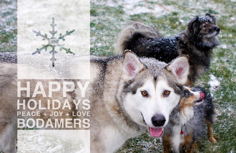 Bodamer Holiday Card 2013 Front.jpg