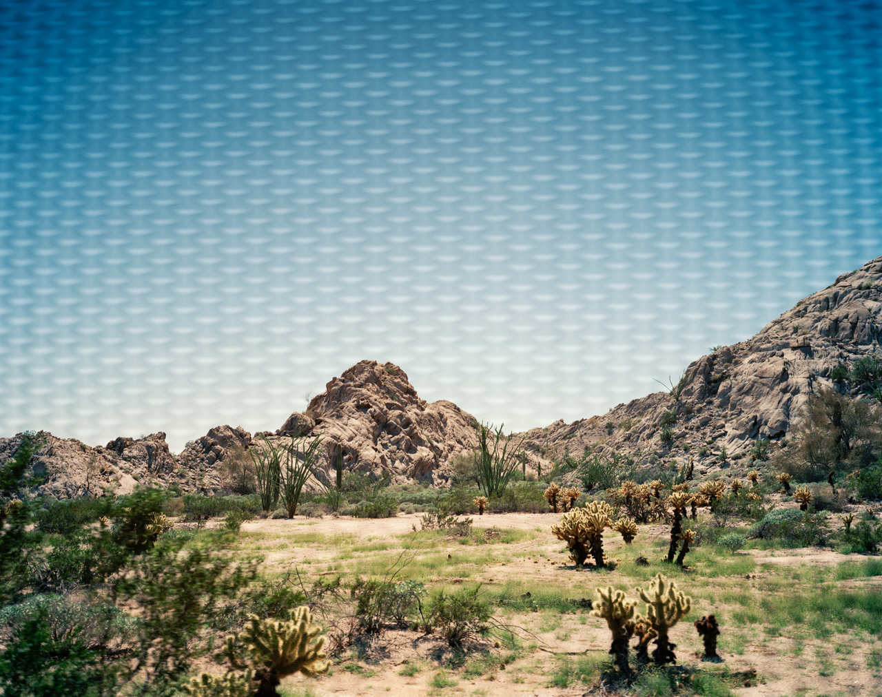 Looking Through, U.S.-Mexico Border Fence, Near Tinajas Altas, Arizona