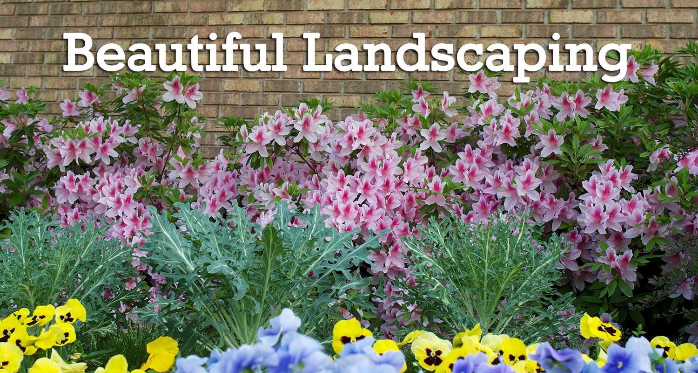 DoMar-landscaping.jpg