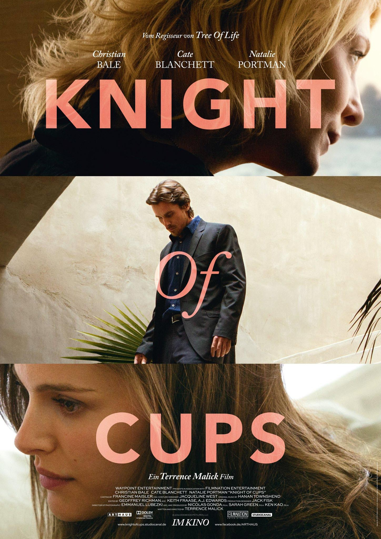 knight_of_cups_ver2_xxlg.jpg