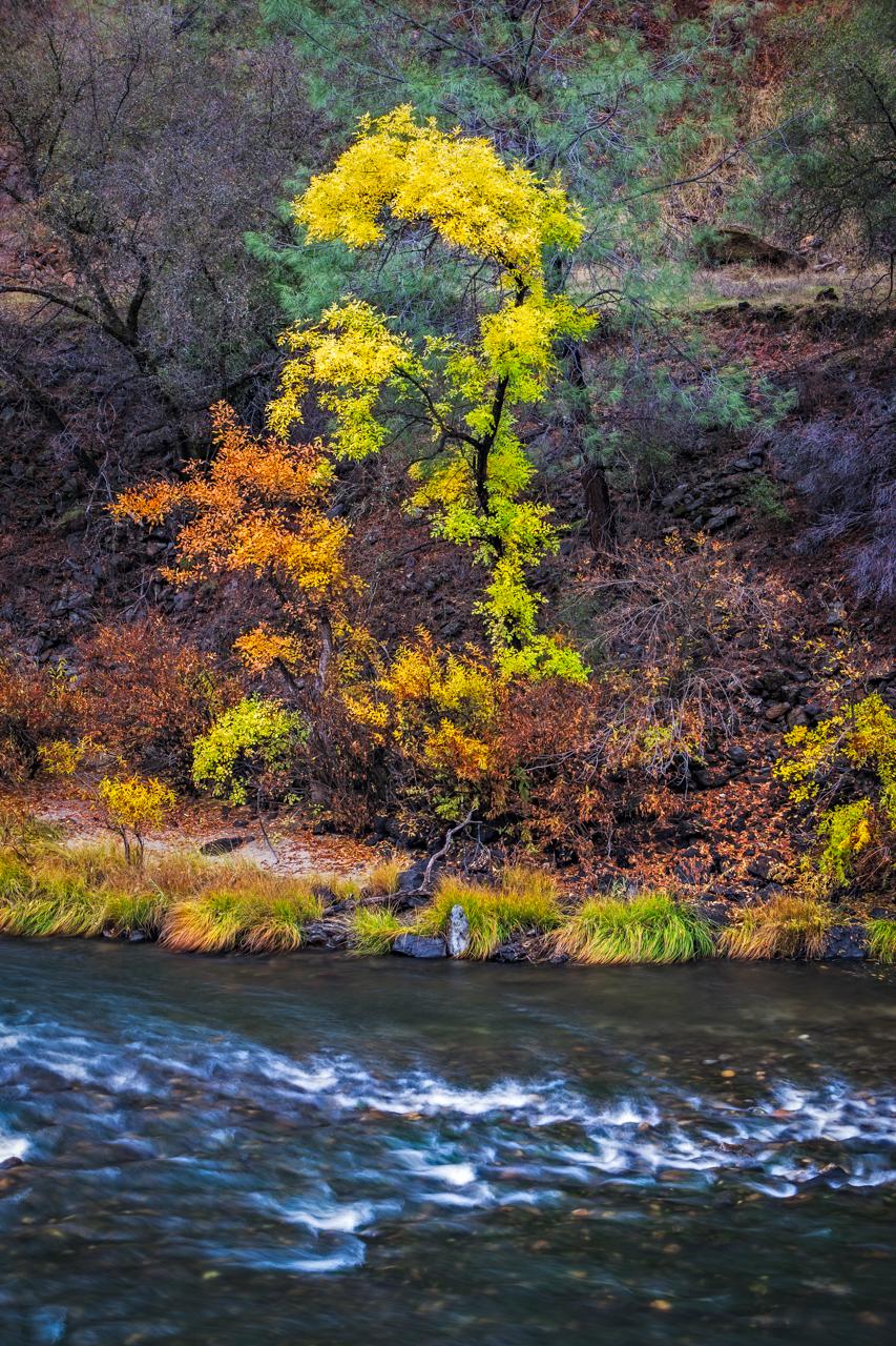 River Color