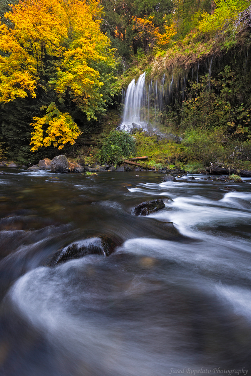 Flowing Fall