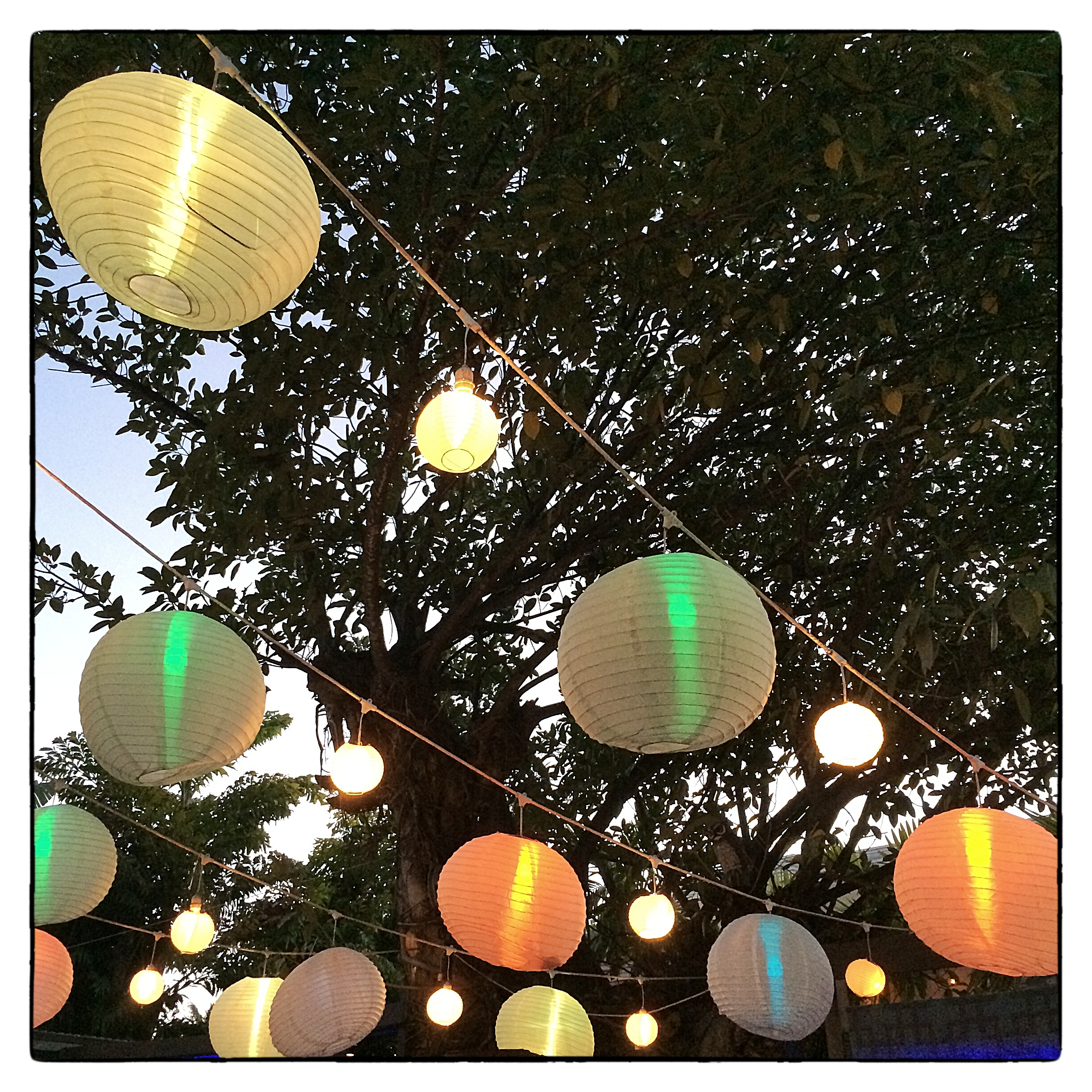 Courtyard dining under lanterns at  Union  in Delray Beach, Fla., shot on March 8, 2014.