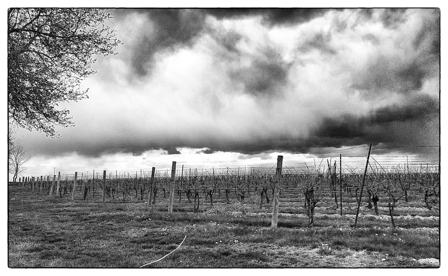 Storm clouds gather over  Jonathan Edwards Winery  in North Stonington, Conn., shot on May 4, 2014.