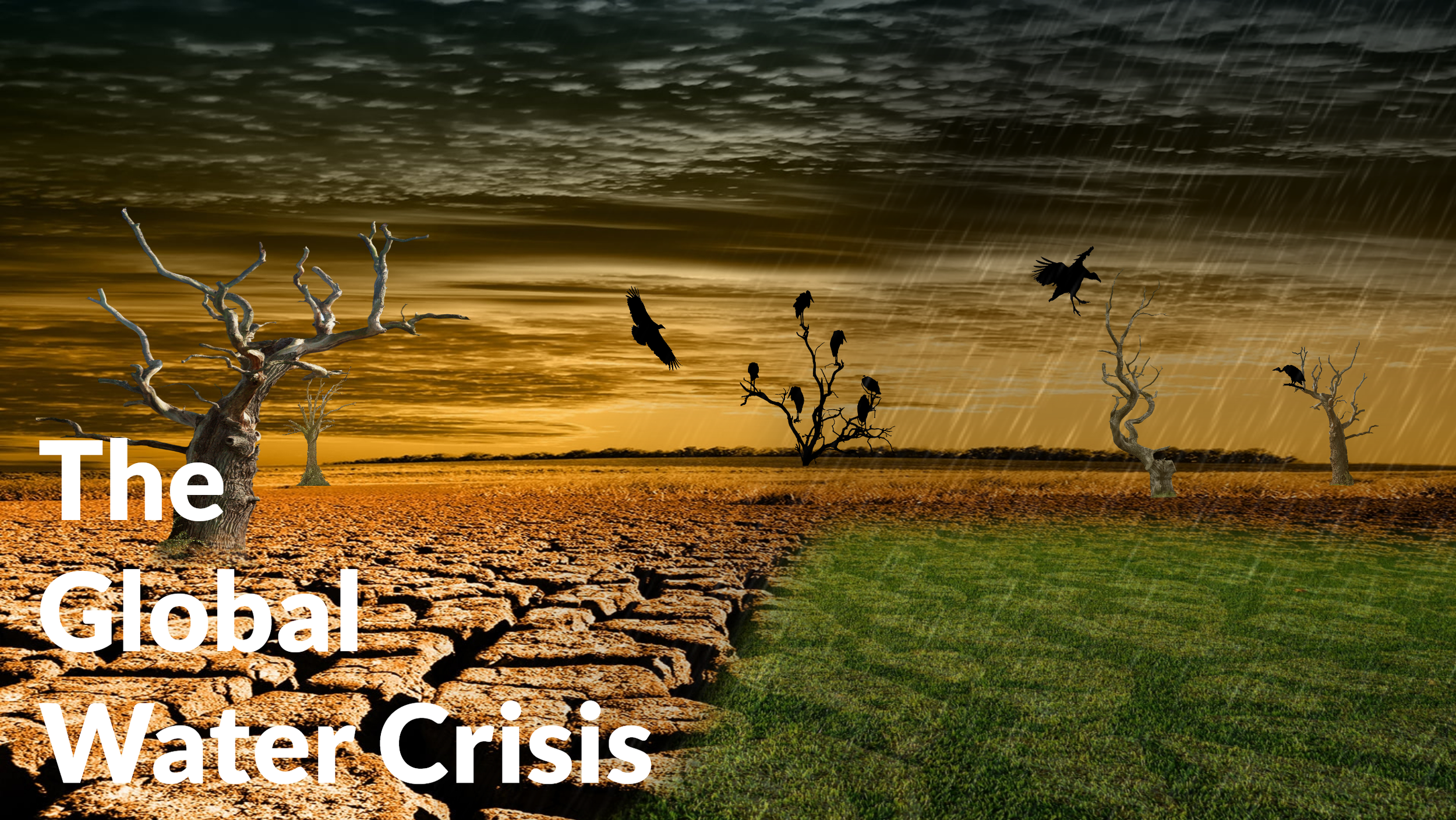 Desert drought - Water Crisis Topic (With Text).png