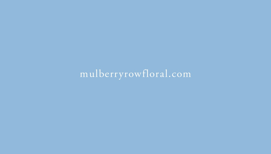 Mulberry Row Cards 20132.jpg