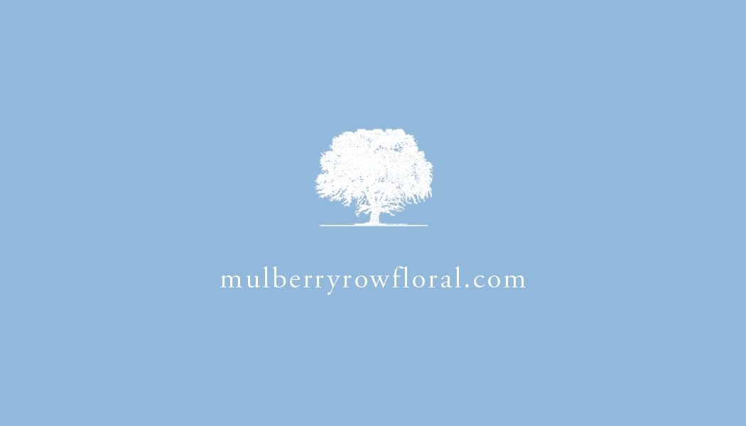 Mulberry Row Cards 201312.jpg