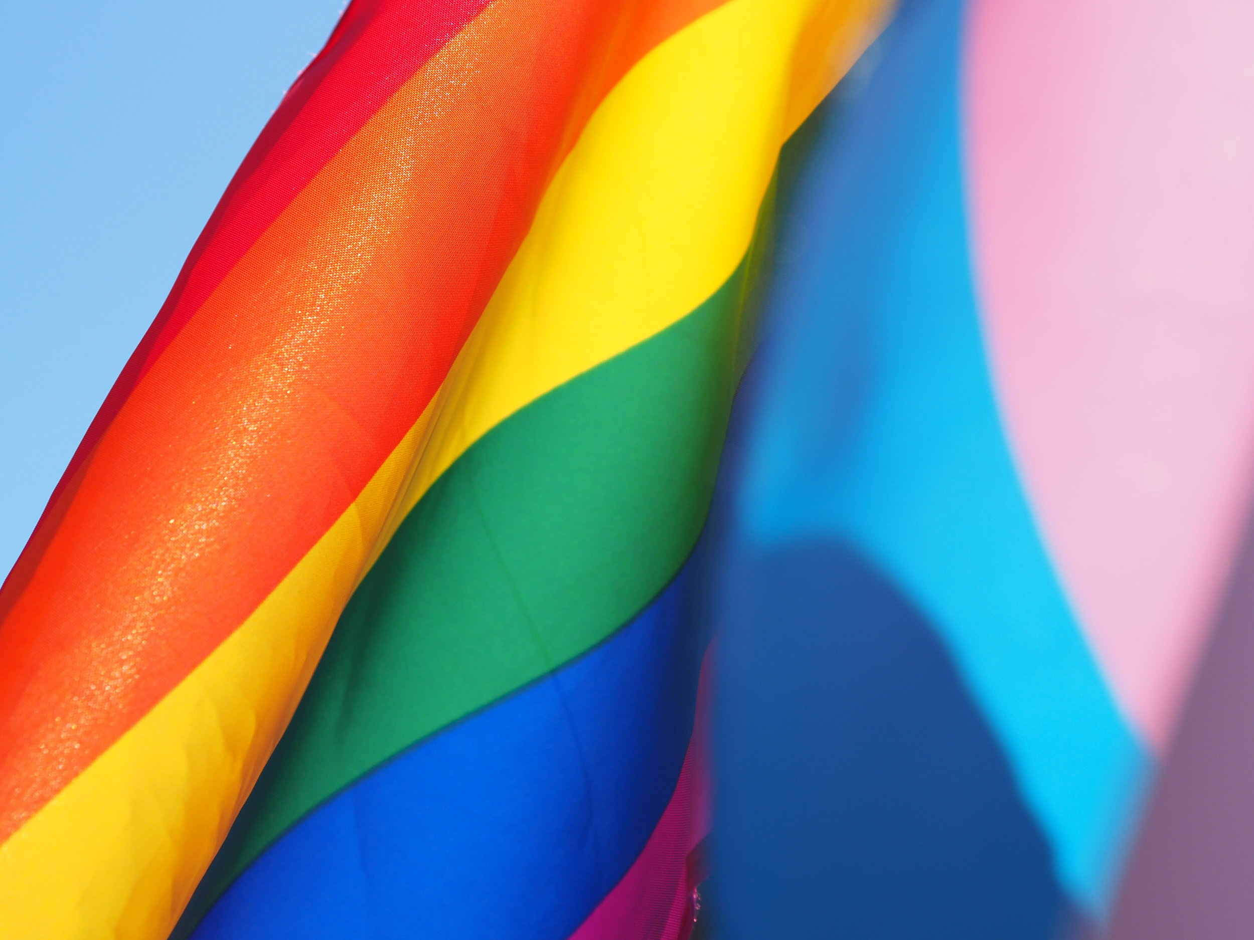 Gay and Trans Flags