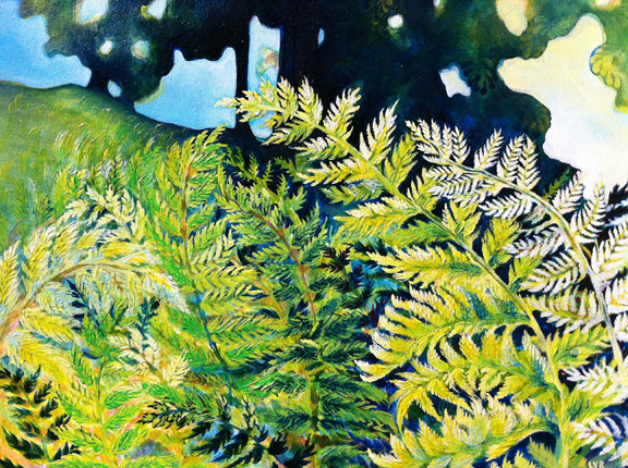 """Ferns Delight   oil on canvas  16"""" x 20"""""""