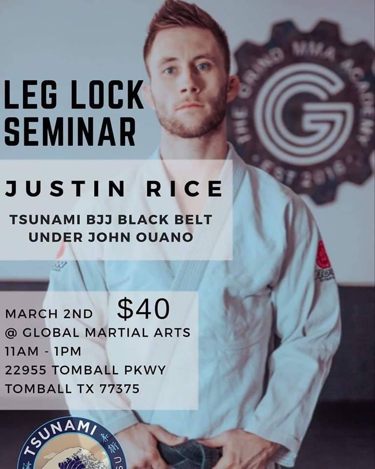 Brazillian Jiu Jitzu Leg Lock Seminar.jpg