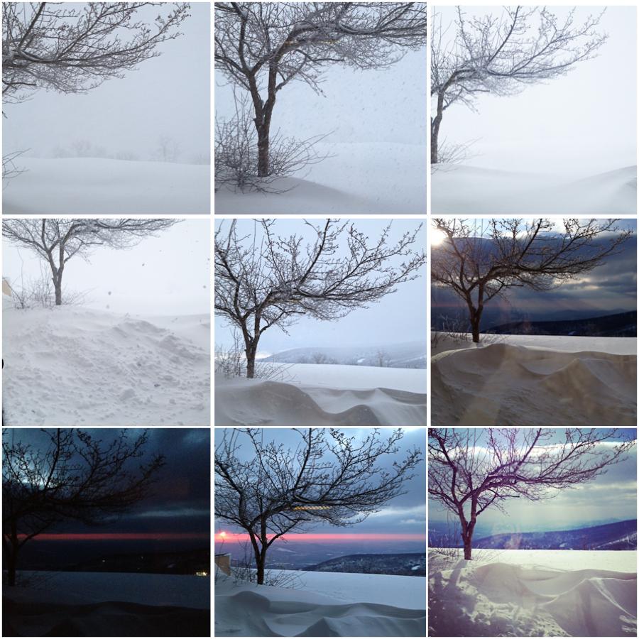 Wintergreen_View.jpg