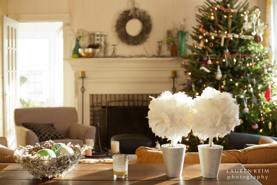 holiday_house-3.jpg
