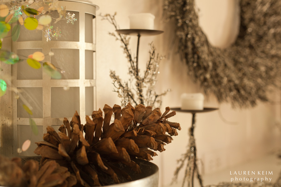 holiday_house-4.jpg