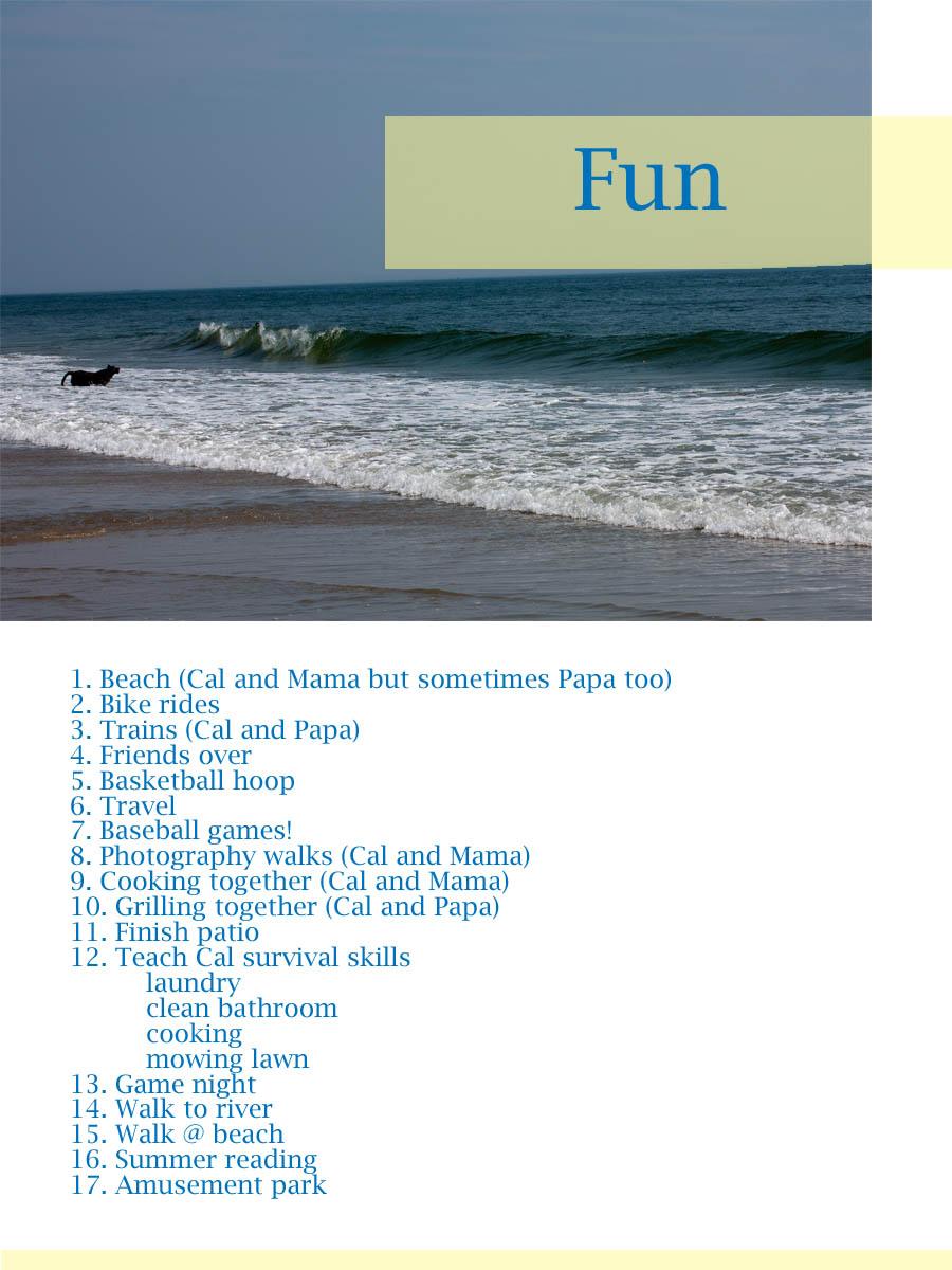 Project Summer_Fun.jpg