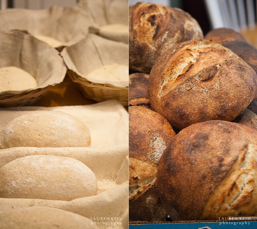 dough to bread.jpg