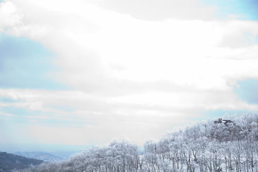 Dream Snow-7.jpg