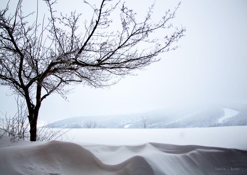 Dream Snow-4.jpg