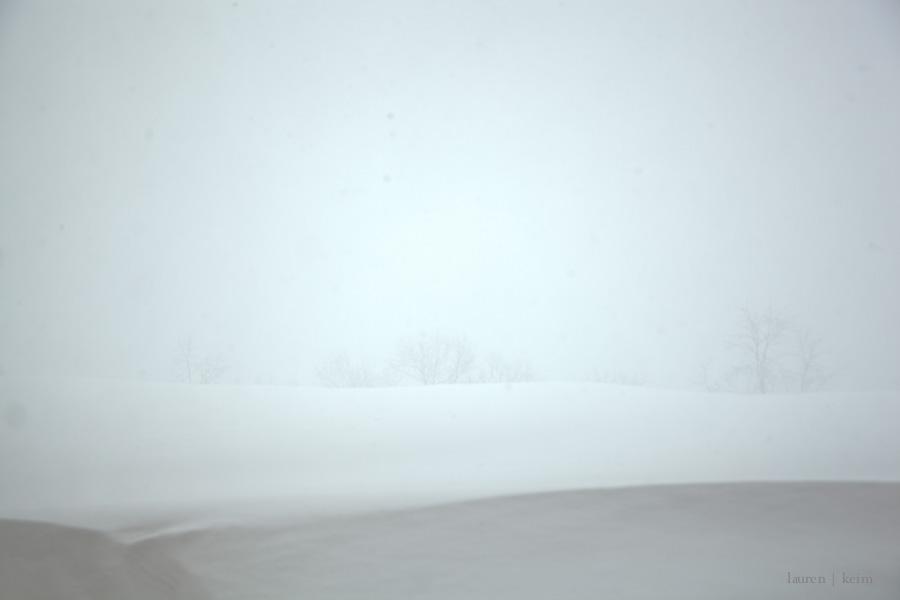 Dream Snow-3.jpg