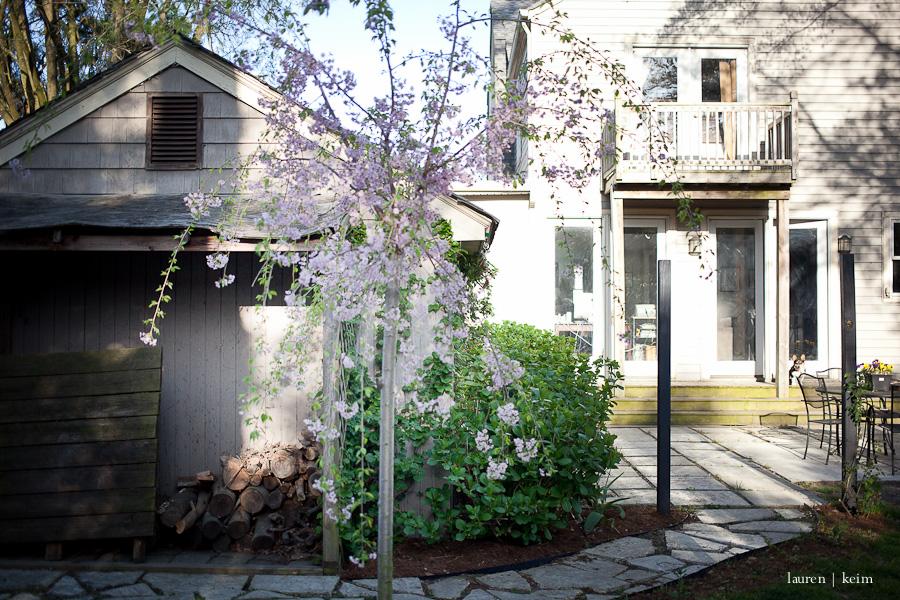 spring garden-5.jpg