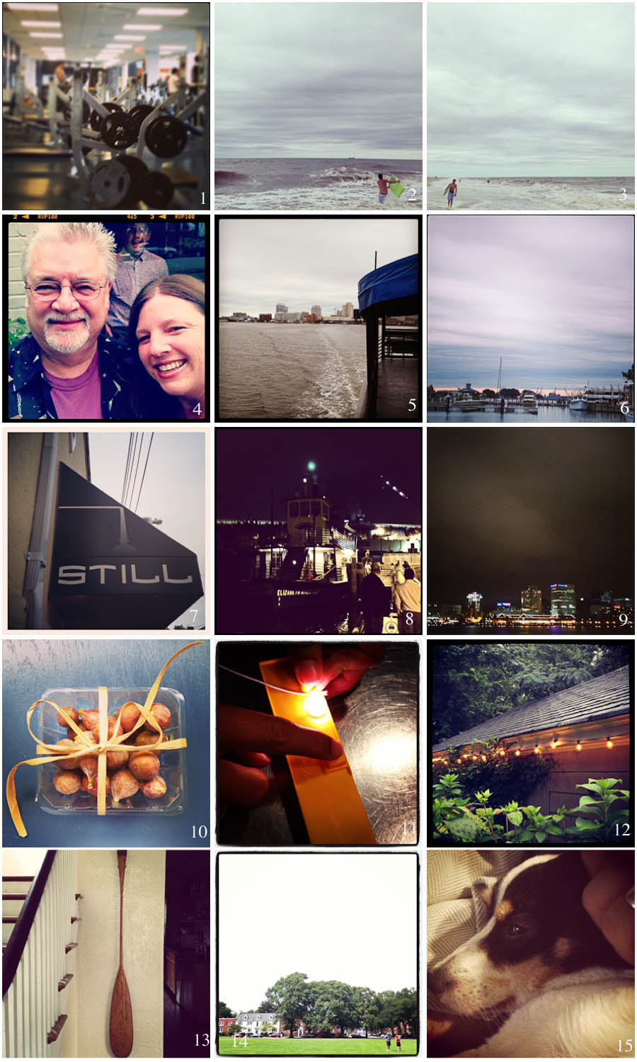 1. let's do this | 2. choppy seas | 3. wear a kid out | 4. photobomb by cal | 5. ferry to portsmouth | 6. norfolk at sunset | 7. still | 8. waiting on the ferry home | 9. norfolk at night  | 10. glorious figs, pretty packaging | 11. rocket man | 12. rainy nighttime garden | 13. neel's paddle | 14. rocket men | 15. sweet snuggly violet