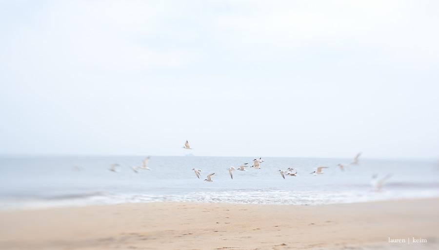 beach_summer-6.jpg