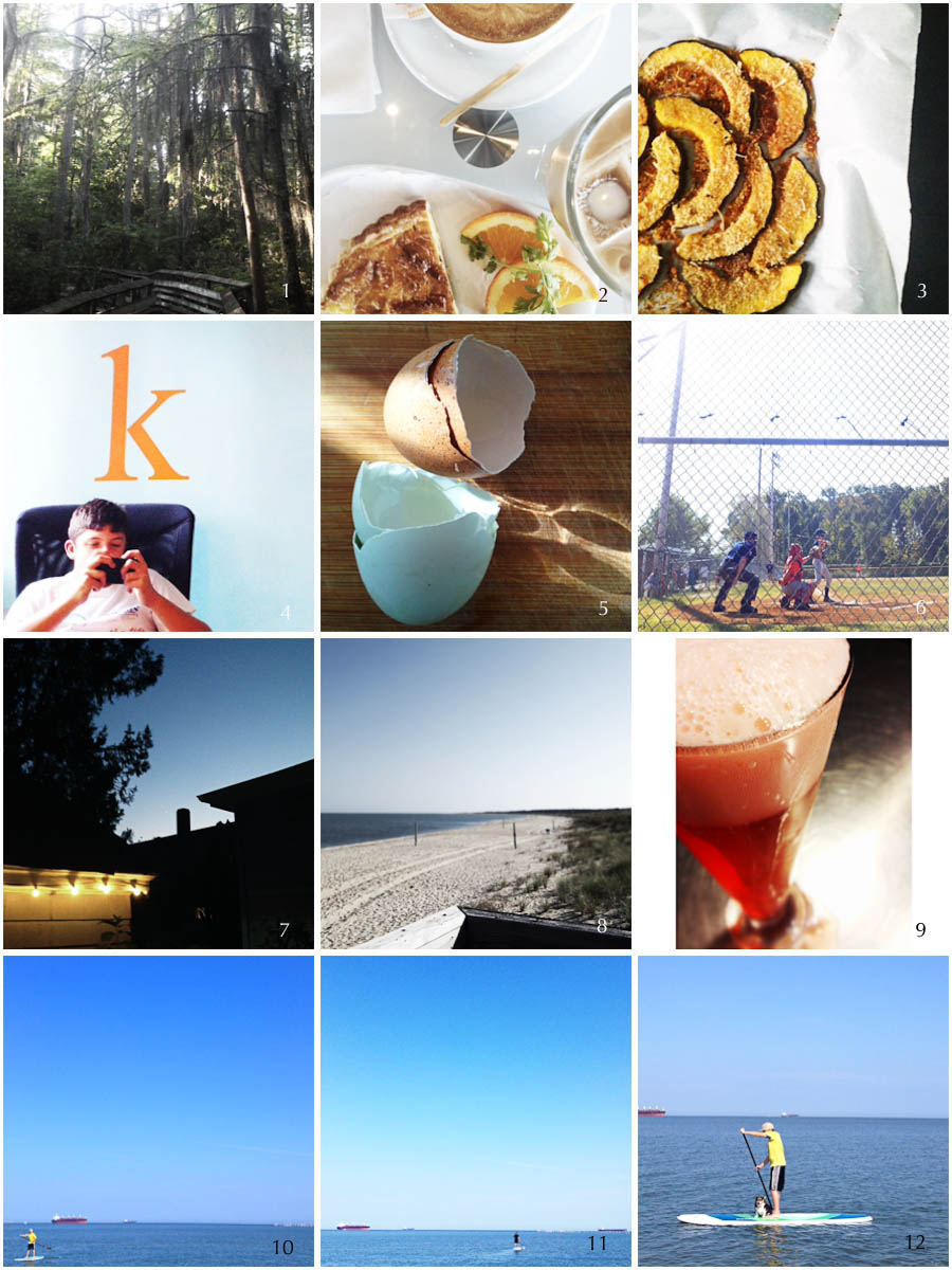 1. friday hike | 2. photo prompt (paper) | 3. noreen's squash | 4. pre-game ritual | 5. pre-game breakfast | 6. game | 7. saturday night | 8. photo prompt (corner) | 9. campari shandy (because it feels like summer | 10. cal paddles | 11. neel paddles | 12. fatty paddles
