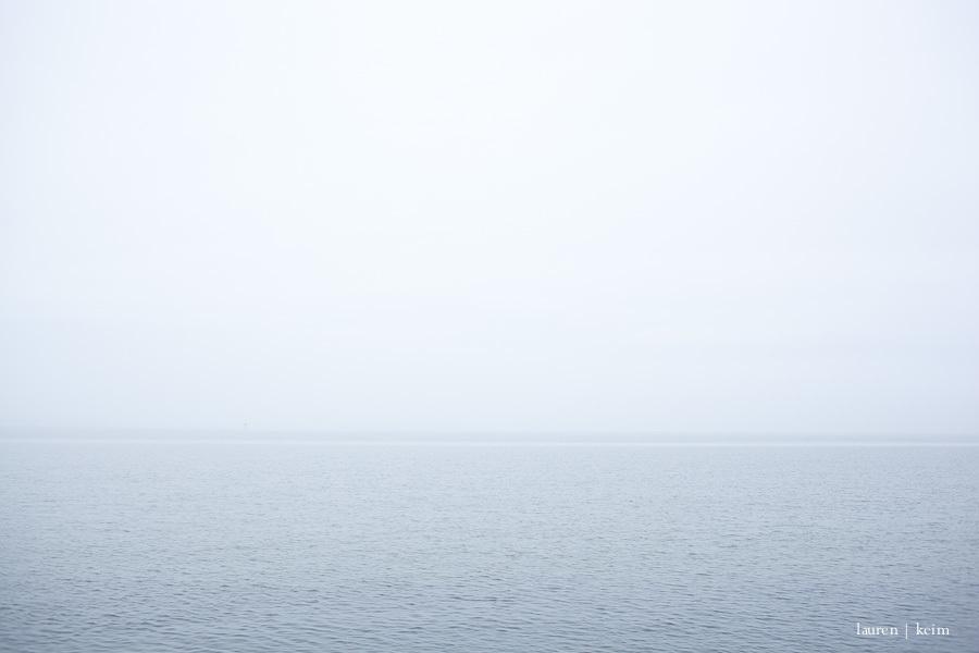 foggy morning-1.jpg