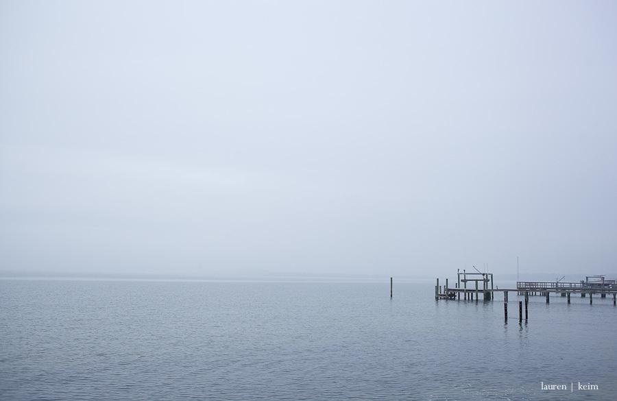 foggy morning-2.jpg