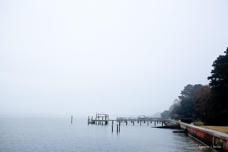 foggy morning-3.jpg
