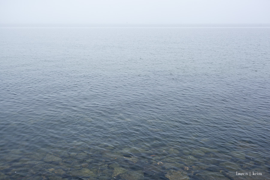 foggy morning-4.jpg