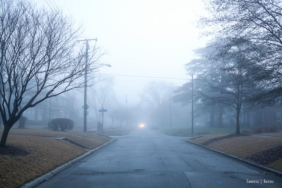 fog-8.jpg