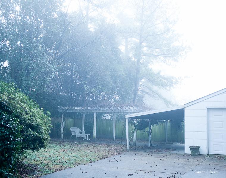 fog-9.jpg