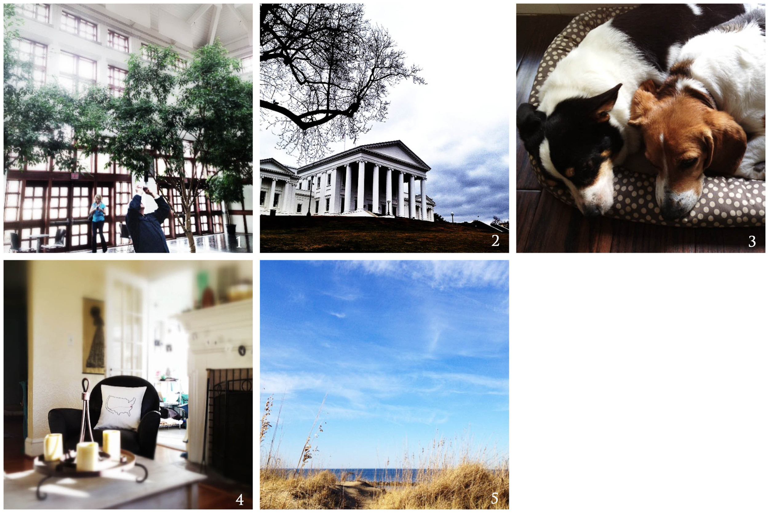 1. ditch your gear! | 2. storm clouds over richmond (metaphor?) | 3. sugarplums | 4. cozy corner thanks to plumed! | 5. lauren's happy place, sun on my face, sand in my shoes