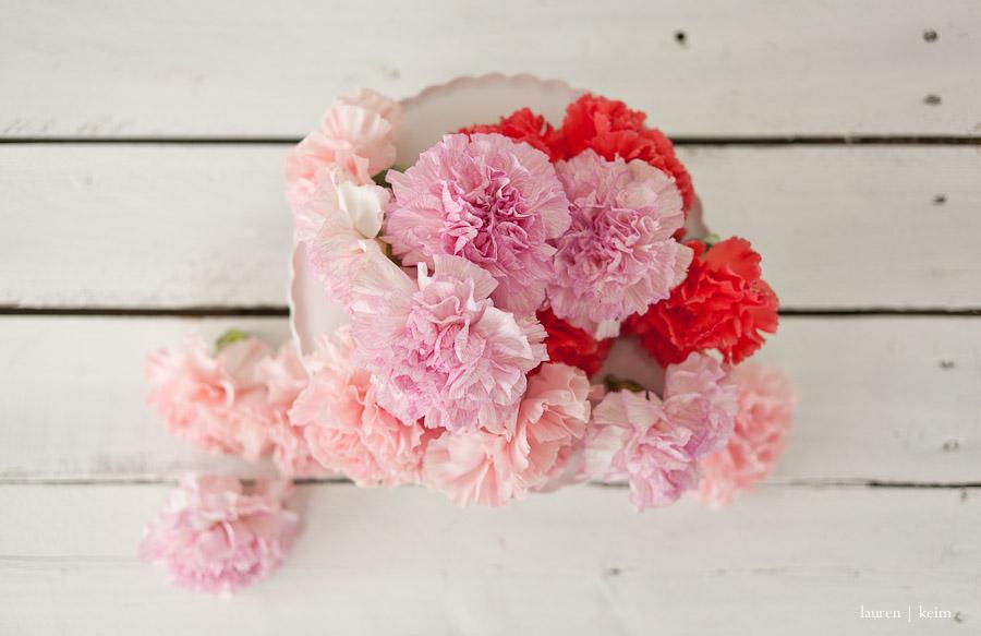 carnations-3.jpg