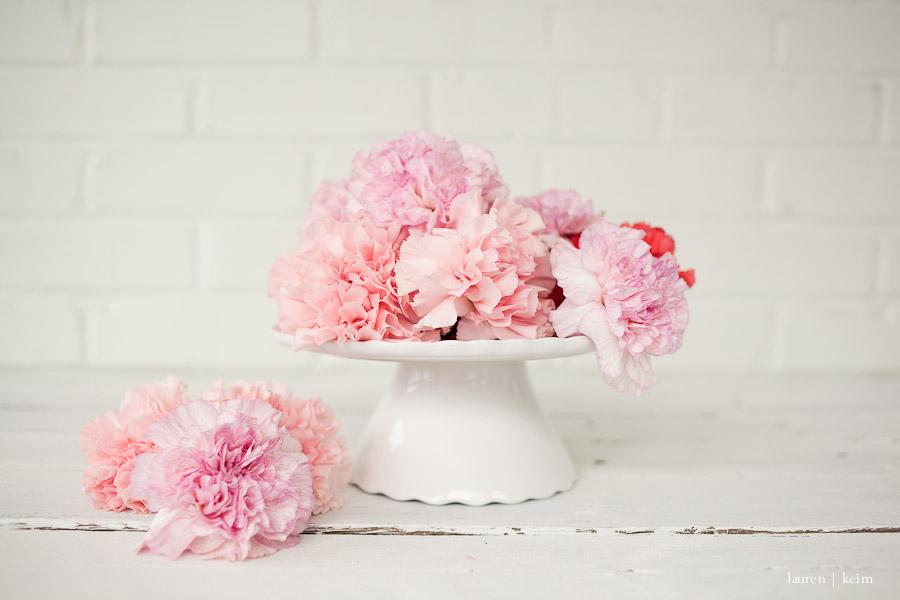 carnations-4.jpg