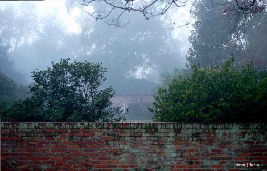 Foggy morning. Fuji X-E2, 35 mm