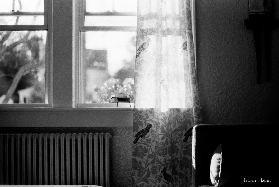 Kodak TMax400 on my PentaxK100