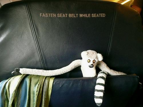 airplane seat pocket.jpg