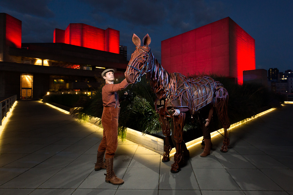 We took Joey up on the roof at dusk to announce the return of  War Horse  return to the  National Theatre .