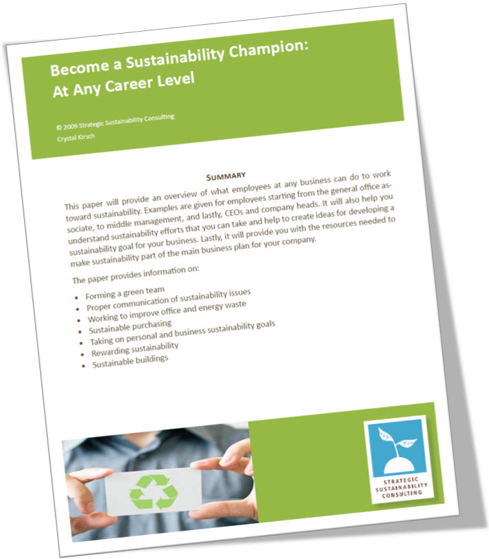 Become a Sustainability Champion: At Any Career Level